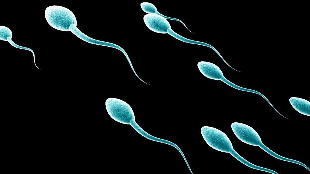 tinh trùng loãng có con được không