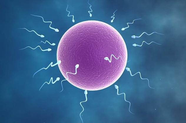 tinh trùng yếu và cách chữa trị