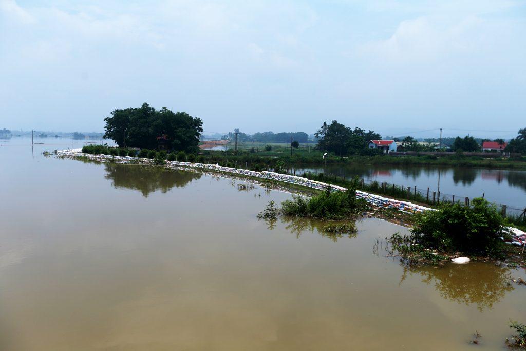 sông bùi